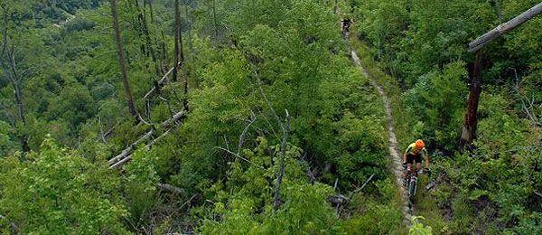 South Fork Trail Amp Loop Cabin Rentals Of Georgia