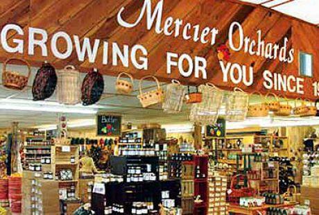 Mercier Apple Orchards Cabin Rentals Of Georgia