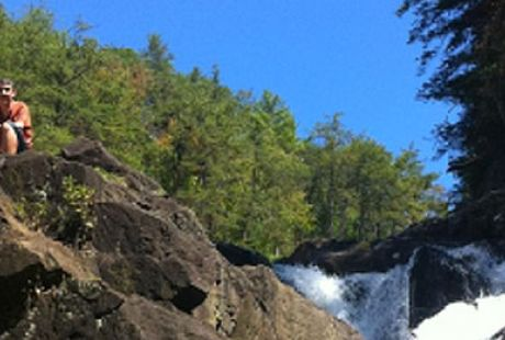 Cohutta Wilderness Trails Blue Ridge Hiking Trails