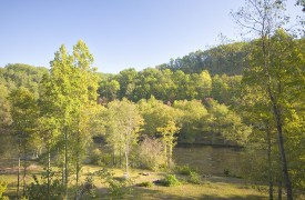 Fallen Timber Lodge | Cabin Rentals of Georgia | Mountains, Trees, & River