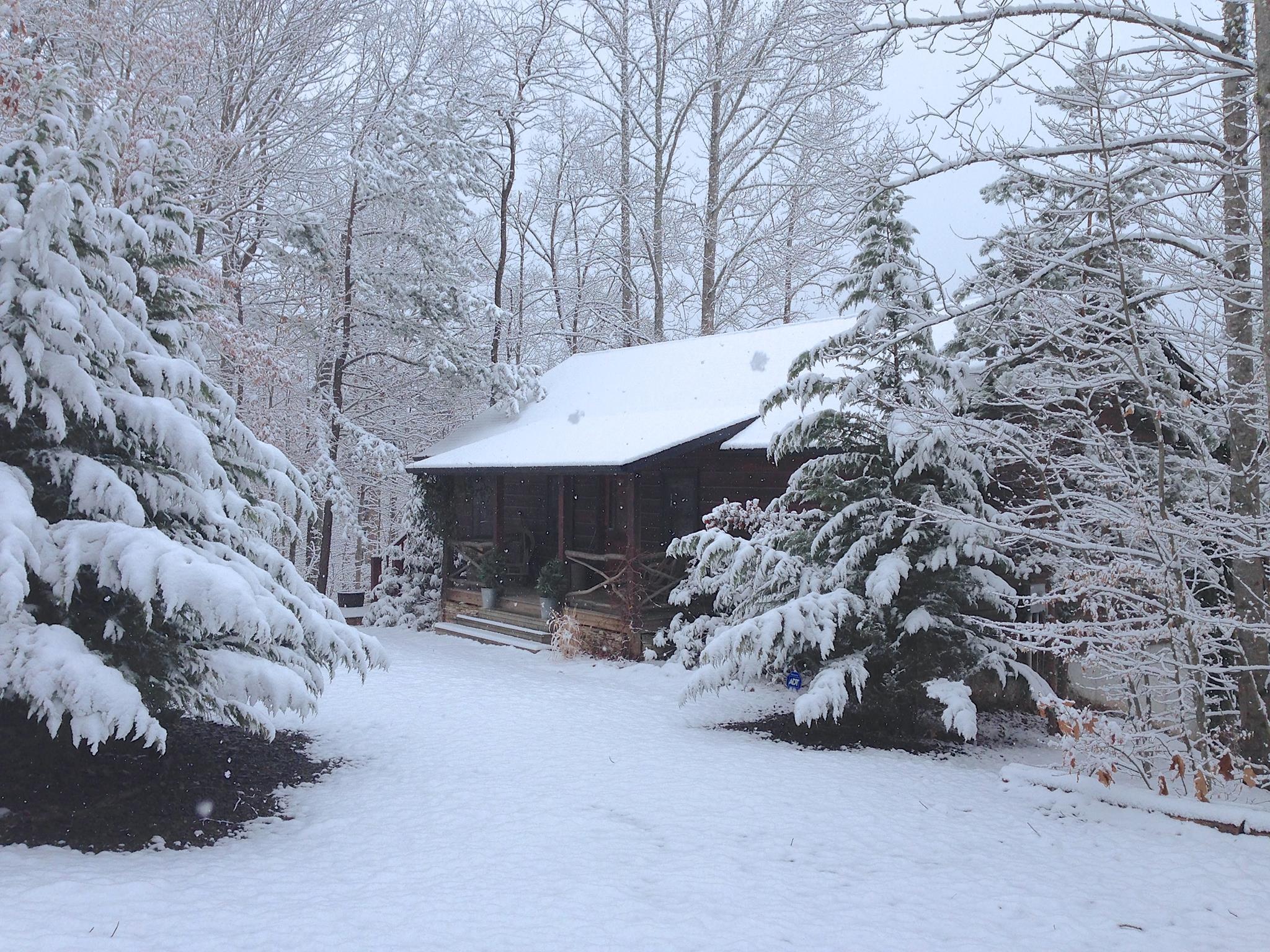 Blue Ridge Ga Cabins For Rent North Georgia Mountain